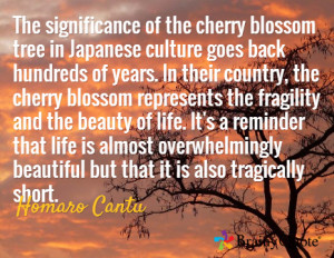 QUOTE ON CHERRY BLOSSOM