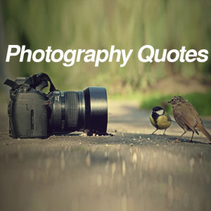 530-photographer-quotes-famous.jpg