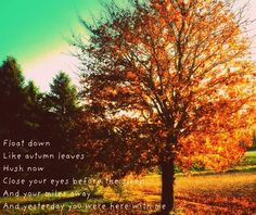 Autumn Leaves Quotes Tumblr