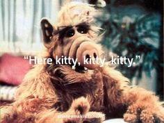 """Gordon Shumway: """"Here kitty, kitty, kitty."""" on Changemakrs.com"""