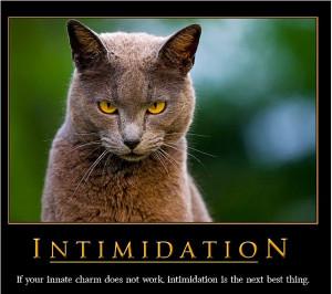 ... charme ne fonctionne pas, la prochaine option reste l'intimidation