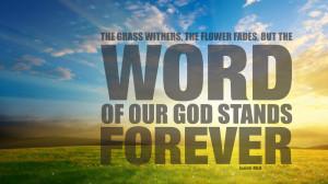 christian, wallpaper, nature, scripture, isaiah, wallpapers, desktop