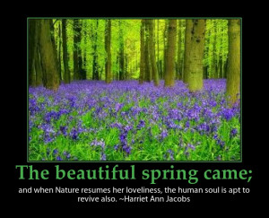 Beautiful spring quote picture