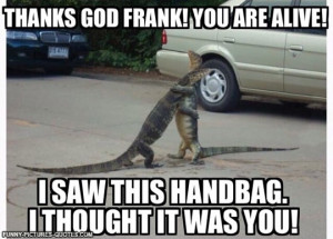 Scared Funny Lizard Pics