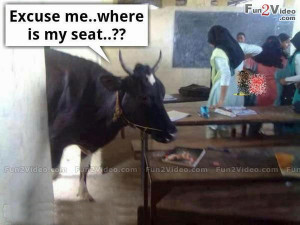 Funny Classroom Funny Picture