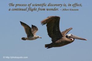 Sayings, Quotes: Albert Einstein