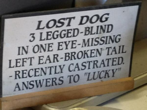 Sign at a lawn mower repair shop. What a terrible name for that dog.
