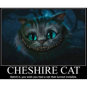 Cheshire Cat liked on Polyvore