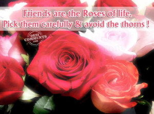 Friends are the roses of life,Pick them carefully & Avoid the thoms ...
