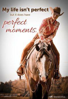 Horse show quotes