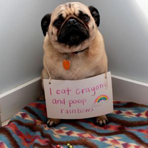 eat-crayons1.jpg