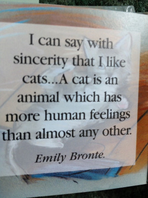 Love My Cat Quotes