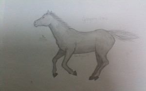 Drawing Galloping Horse Ene