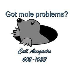 mole_problems_rectangle_decal.jpg?height=250&width=250&padToSquare ...