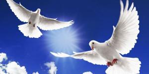 34 Unique Memorial Service Ideas