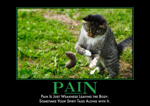 PAIN - Pain is just weakness leaving the body. Sometimes your spirit ...