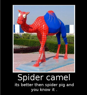 Wednesday Funny Camel Gif