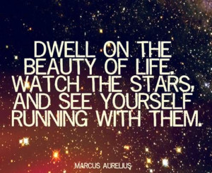 Dwell on the beauty of life... Marcus Aurelius Quote