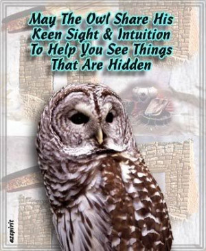 love owls, they inspire me. HOOT