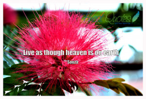 Live as though heaven is on earth ~ Earth Quote