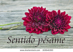 Condolences Images In Spanish Condolences/spanish