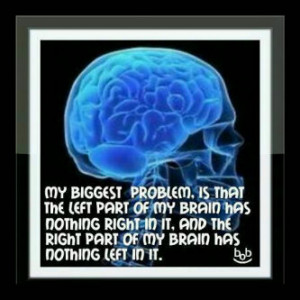 top-20-short-funny-sayings-about-stupid-people-and-stupidity-21705207 ...