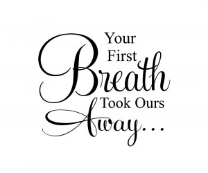 Your First Breath Took Ours Away Vinyl Quote