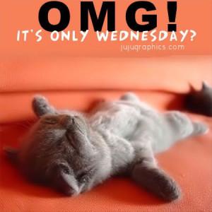 Happy Wednesday, Happy Weekend Quotes Funny, Happy Wednesday Quotes ...
