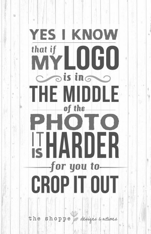 Sarcastic Quotes that pinches photographers (4)