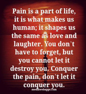 Pain is a part of life, it is what makes us human; it shapes us the ...