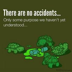 Quotes Love, Inspiration, Wisdom Quotes, Ninja Turtle Quotes, Tmnt ...