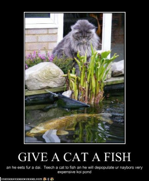 Fishing together quotes quotesgram for Cats go fishing