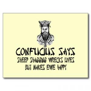 confucius sayings funny