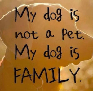 My dog is not a pet...
