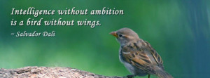 intelligence-without-ambition-quotes.jpg