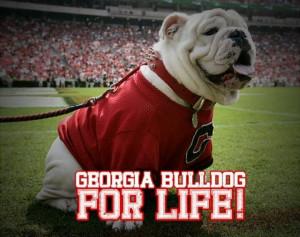 Georgia Bulldog.....