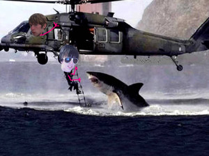 Funny Helicopter Pictures
