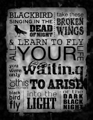 ... Blackbird Beatles, Beatles Blackbird, Blackbird Quotes, Blackbird