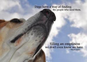 Death Of A Dog Quotes   Dani Barretto Website
