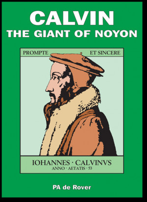 Should John Calvin Theology