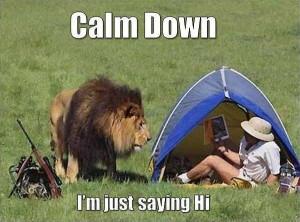 Animal Memes – Calm down