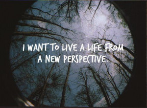 new perspective – panic! at the disco