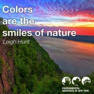Environmental quotes wise sayings deep smiles
