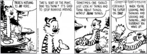Calvin And Hobbes Quotes On Life: Calvin And Hobbes Facebook Covers ...