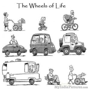The Wheel of Life Cycle Funny Cartoon