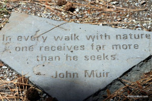john muir quotes yosemite - Google Search