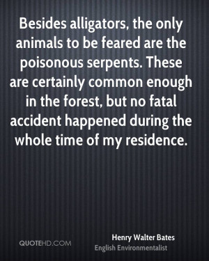 Besides alligators, the only animals to be feared are the poisonous ...