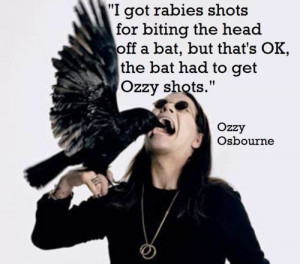 Rock and roll quotes