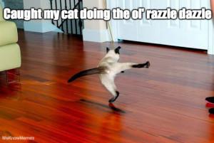 Caught my cat doing the ol' razzle dazzle