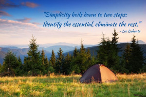 Simplicity boils down to two steps: Identify the essential, eliminate ...
